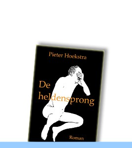 boek-hoekstra-heldensprong