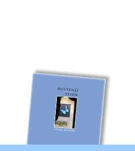 boek-wilbrink-steen