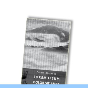 design bookcover | Madina grey